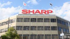 sharp-4