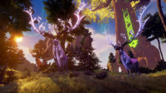 rend_forest