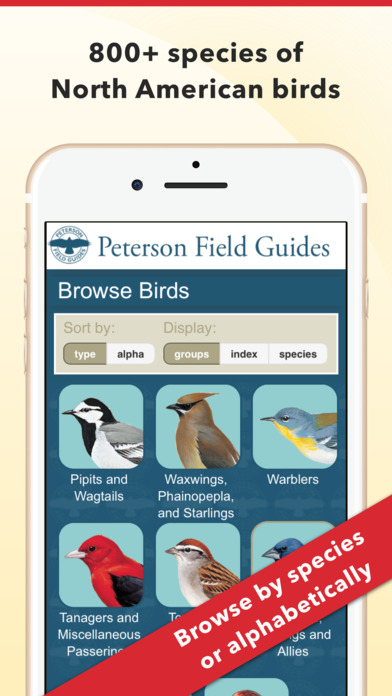 peterson-bird-identifier-1