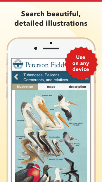 peterson-bird-identifier-2