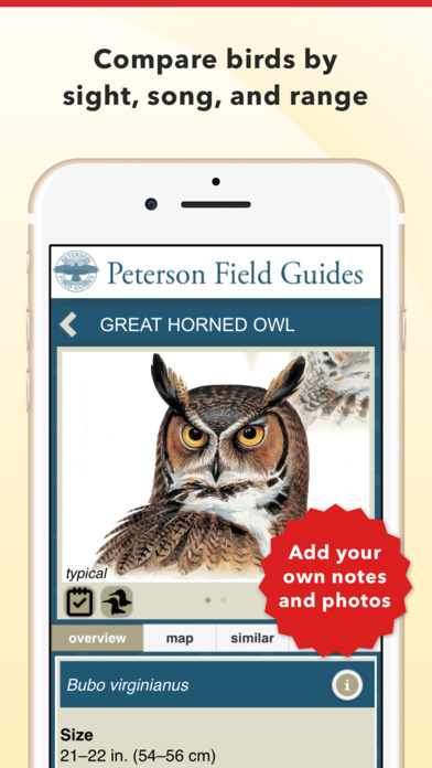 peterson-bird-identifier-4