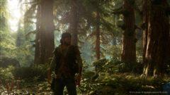 daysgone_forest_4k