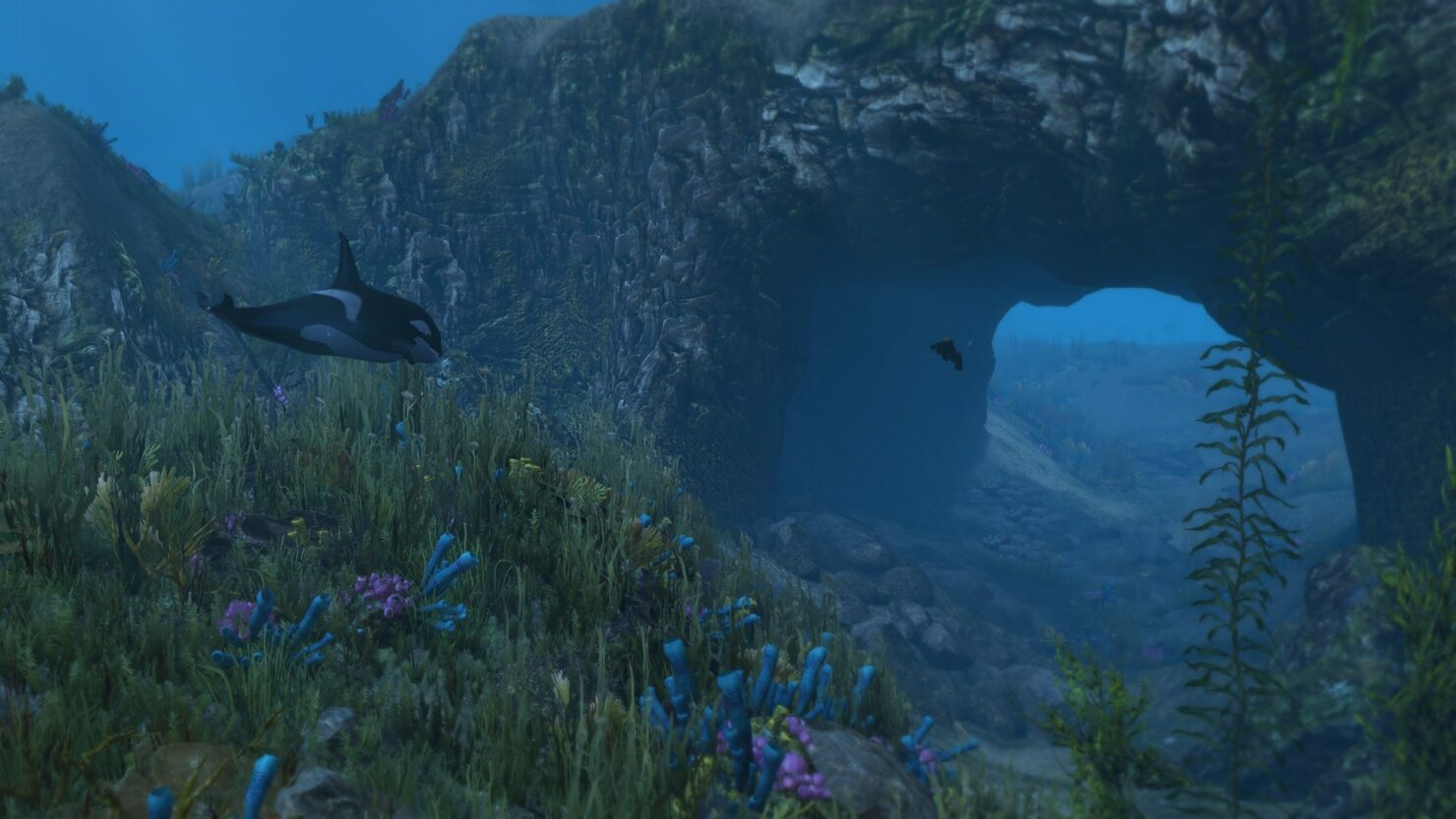 9424bf-underwater