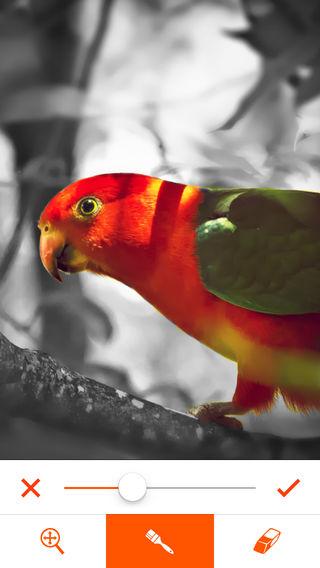 phoenix-photo-editor-4