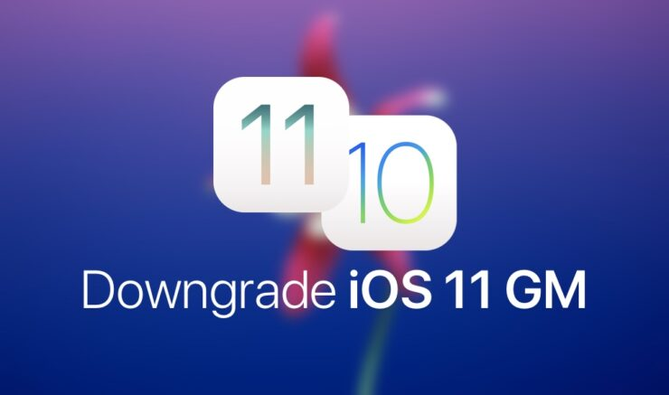 Downgrade iOS 11 GM