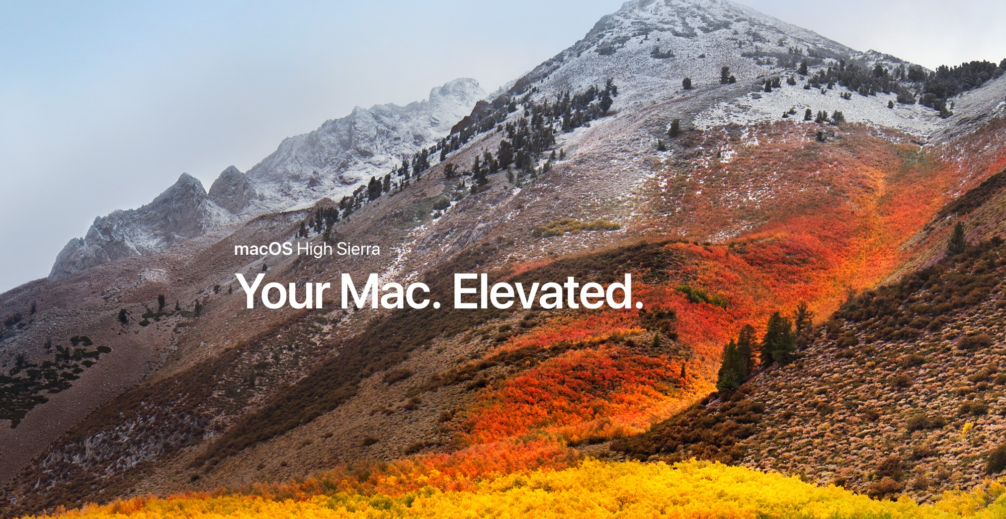 Image result for mac high sierra