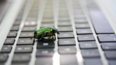 microsoft-bug-bounty