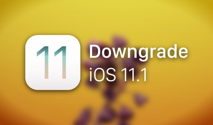 Downgrade iOS 11.1