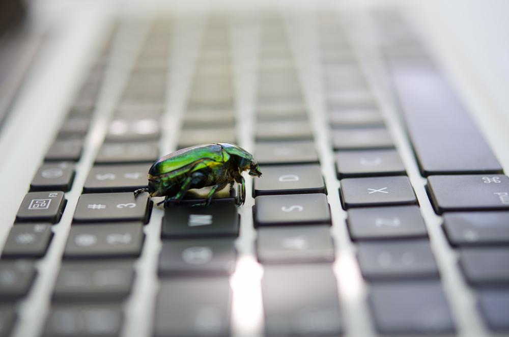 browser bug windows zero day