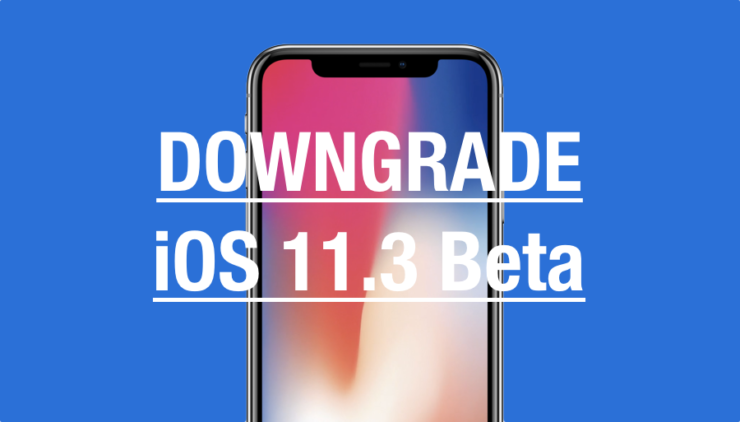 Downgrade iOS 11.3
