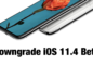 downgrade-ios-11-4-beta