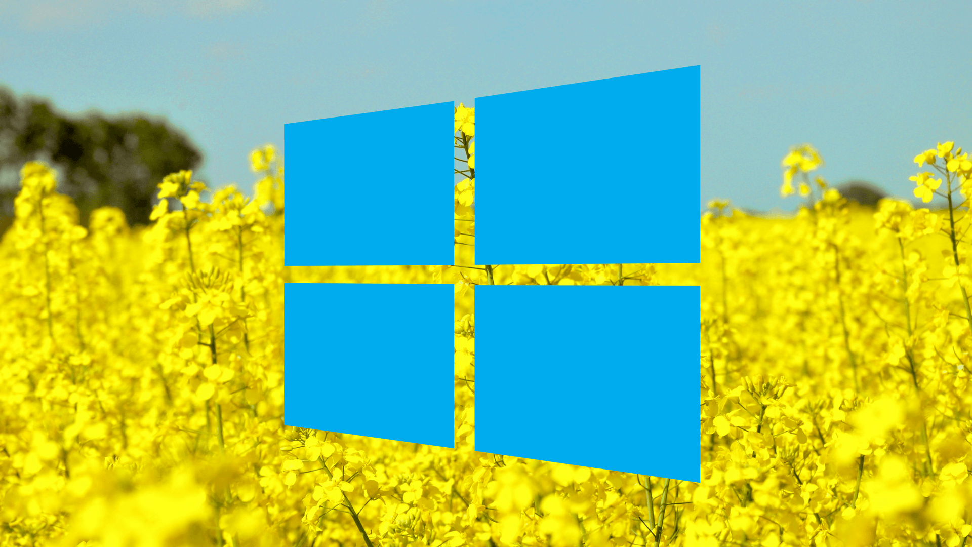 windows 8.1 cumulative update 2019