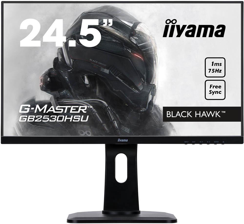 iiyama-black-hawk