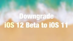 Downgrade iOS 12 Beta to iOS 11