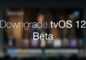 downgrade-tvos-12-beta-to-tvos-11