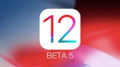 Download iOS 12 Beta 5