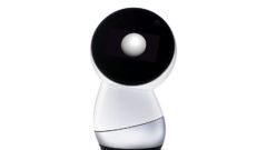 jibo-robot