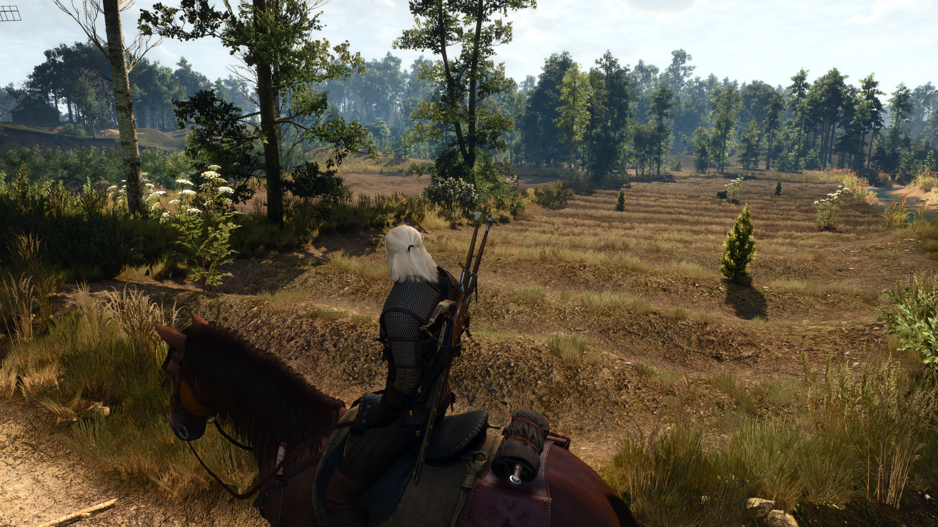 The Witcher 3 White Orchard 4k Terrain Npc Physics Overhaul