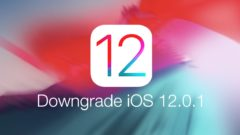 downgrade iOS 12.0.1