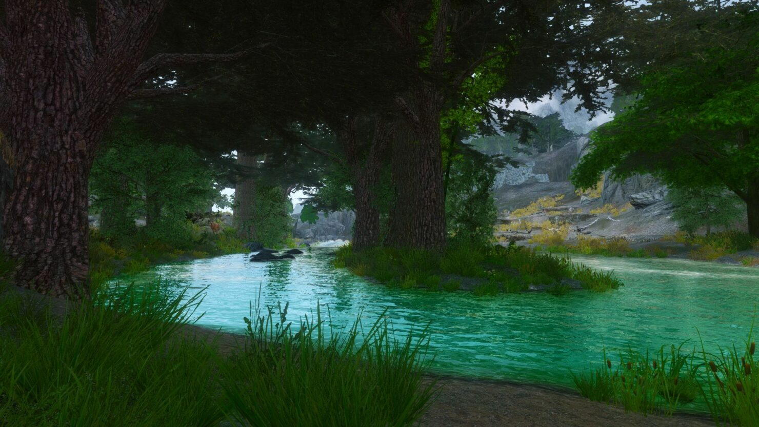elder-scrolls-v-skyrim-legendary-edition-project-rainforest-mod-update-3