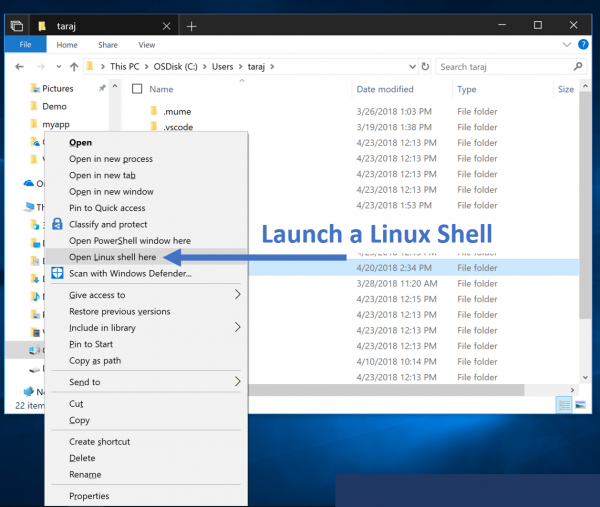 Microsoft Announces $20 Linux-Based Distro for Windows 10 1809