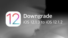 downgrade-ios-12-1-3-to-ios-12-1-2