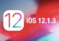 download-ios-12-1-3-final