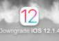 downgrade-ios-12-1-4-iphone-ipad-ipod