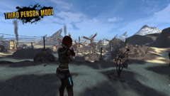 borderlands-game-of-the-year-edition-third-person-view