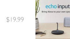 echo-input-deal