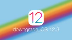 downgrade-ios-12-3