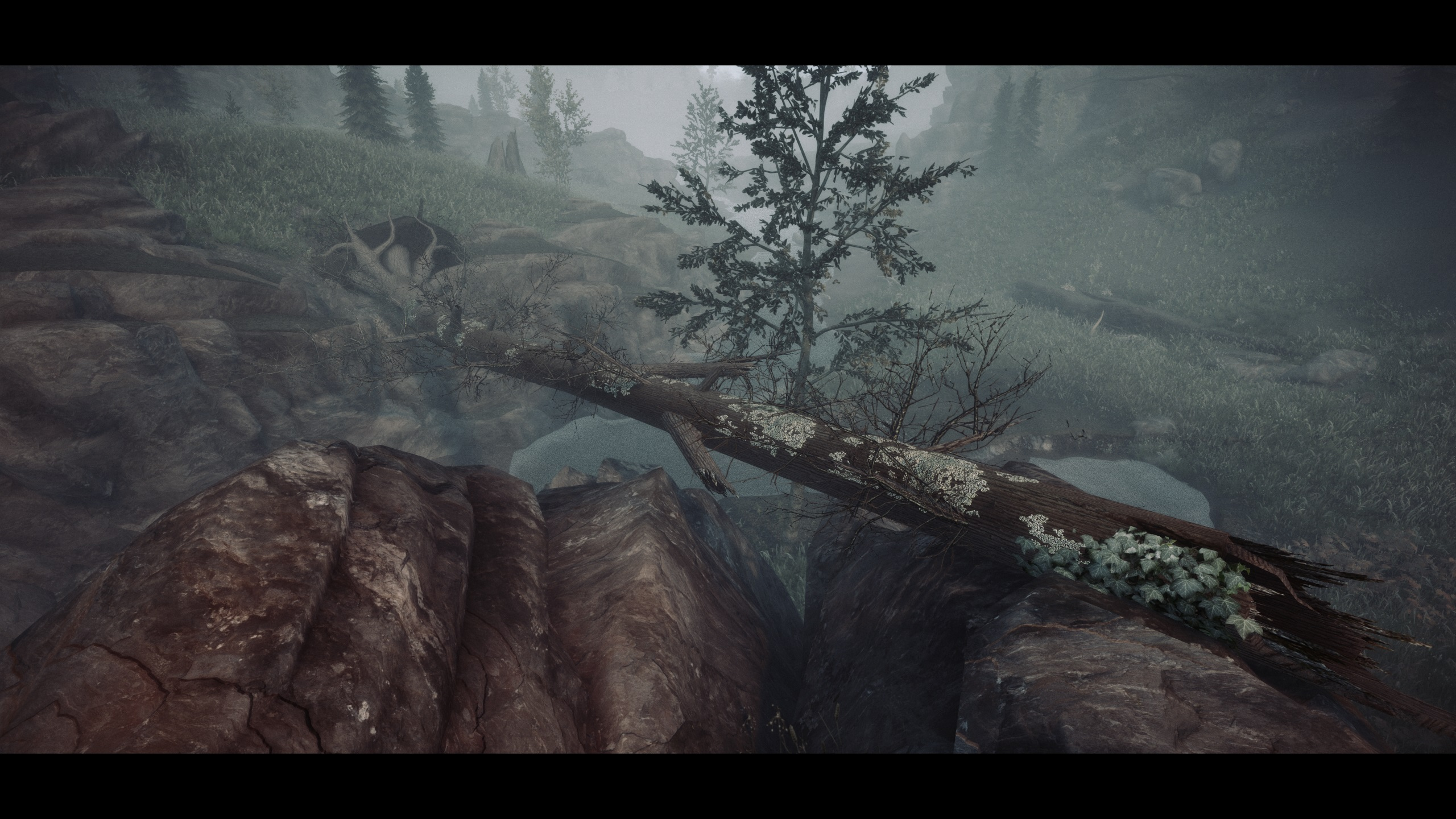 Skyrim Special Edition FleshFX & Ominous ENB Mod Offers