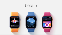 watchos-6-beta-5