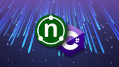 .NET & C# Developer Certification
