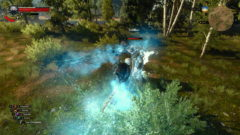 witcher-3-magic-spells10