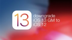 downgrade-ios-13-gm