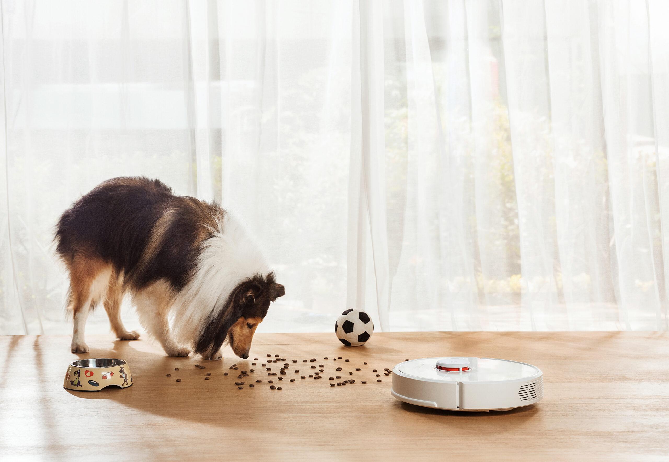 roborock s6 robot vacuum cleaner featured