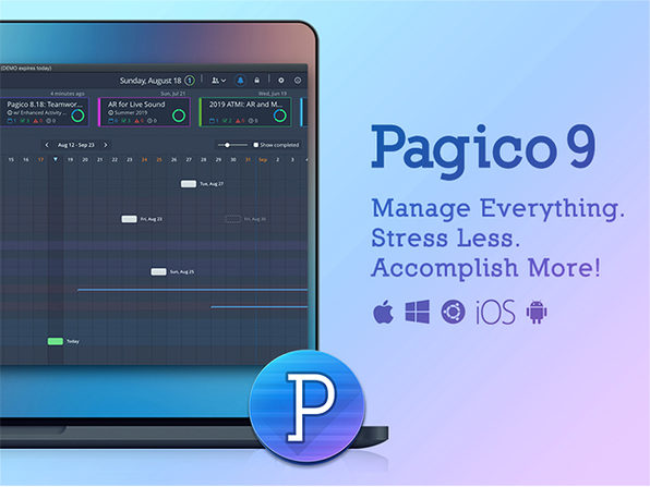 Pagico 9 Task & Data Management Software