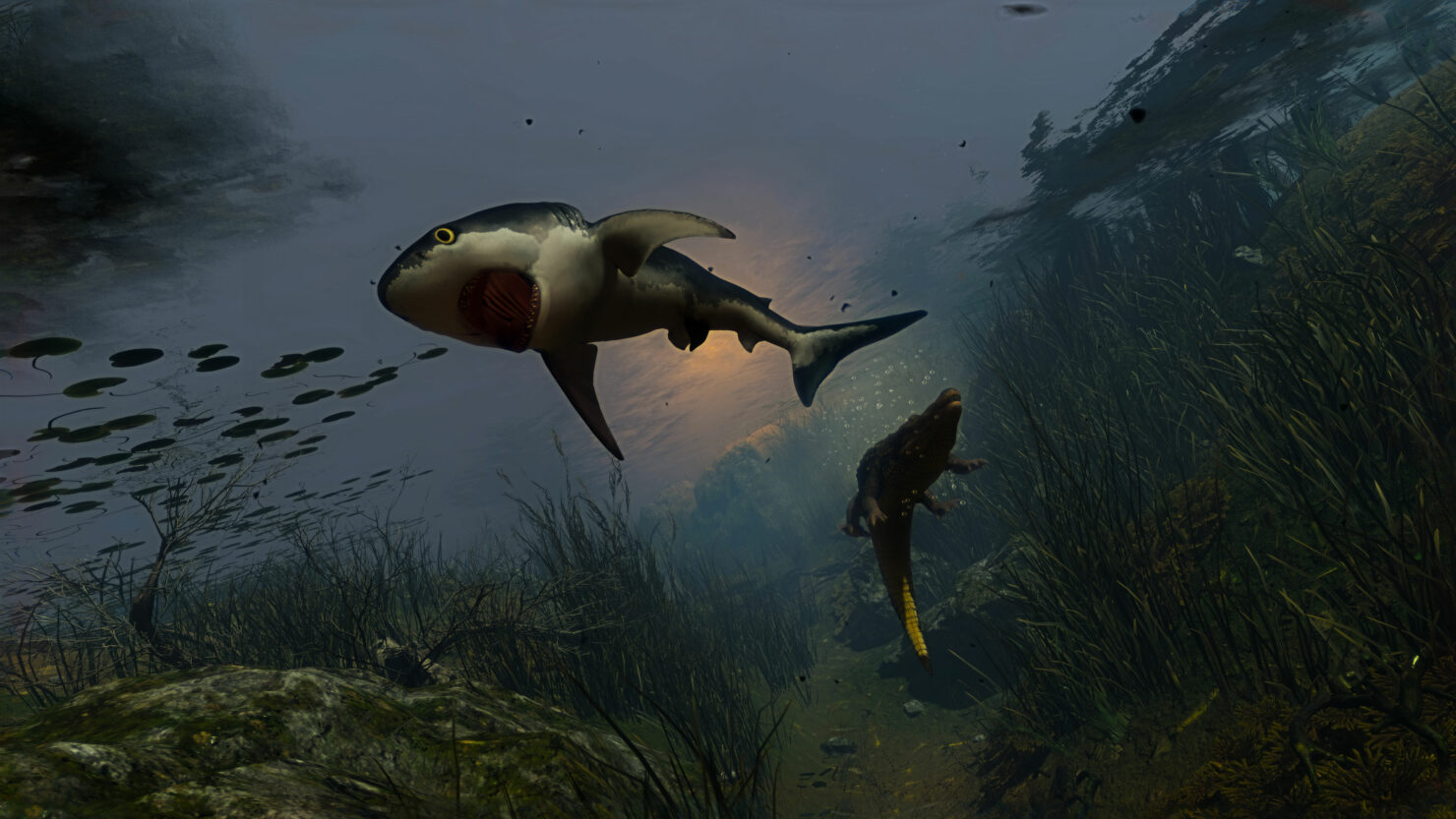 maneater_sharkpup