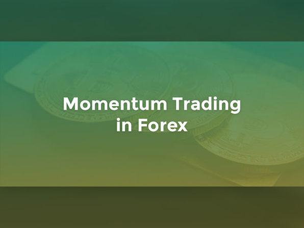 QuantInsti® Quantitative Trading for Beginners Bundle