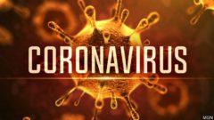 Coronavirus gdc 2020 pax east ea capcom square enix