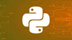 Absolute Python Programming Certification Bundle