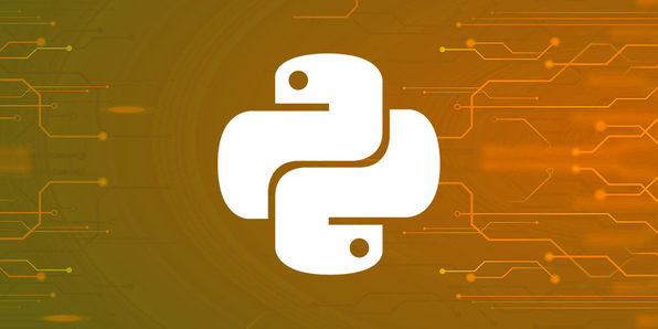 Absolute Python Programming Certification Bundle