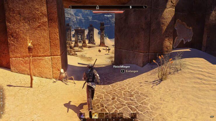 Elder Scrolls Online raytracing