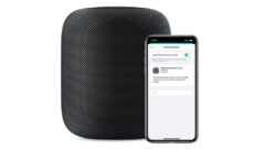 homepod-13-4-5-update-iphone