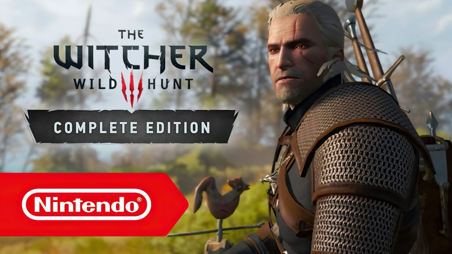 Nintendo Switch The Witcher 3