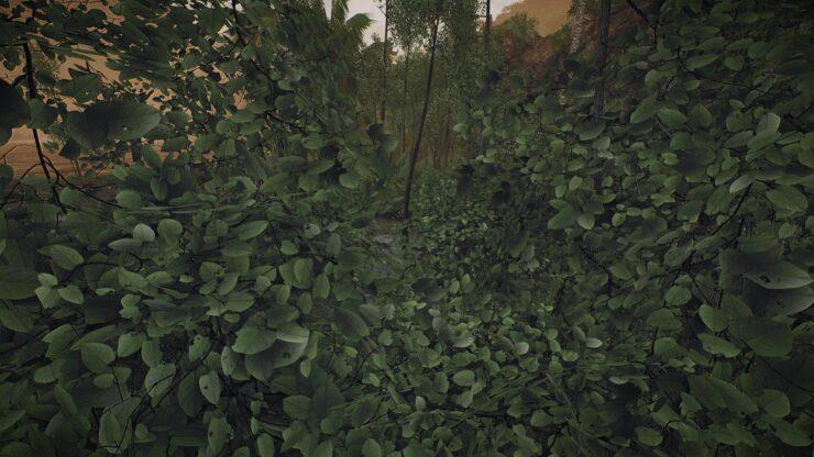 2k-leaves_49959228916_o