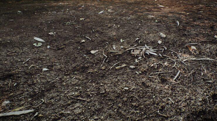 8k-parallaxed-soil-ground_49959226676_o