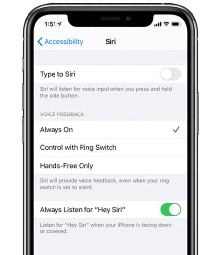 Enable 'Always Listen for Hey Siri' option