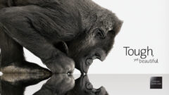 corning-gorilla-glass-victus